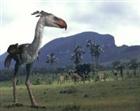 View PaleoBird's Profile