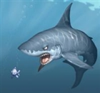 View Sharky13's Profile