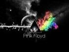 View David_Gilmour's Profile