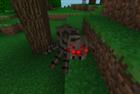View SpiderEye1's Profile