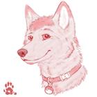 CraftAllTheThings's avatar