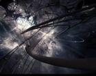 __FateofDeath__'s avatar