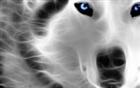 View MCFUser2676226's Profile