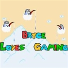 View BryceLovesGaming's Profile