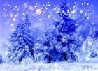 _Nate_Frozen_Rain_'s avatar