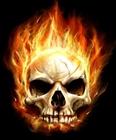 Skullcracker445's avatar