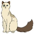 Emerald_Falls's avatar