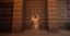 JoeJoeVsGaming's avatar
