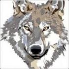 Wolf1375's avatar