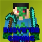 View Budy8760_Gaming's Profile