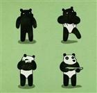 View Infrared_Panda's Profile