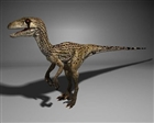 Skynonychus's avatar