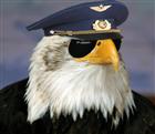 Comito's avatar