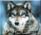 yourock129's avatar