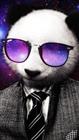 littlecezer's avatar