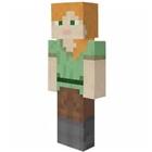 View Minecraft_Staff's Profile