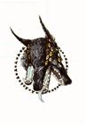 Bacu's avatar