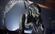 View Xenomorph20991's Profile