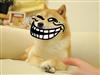 Xavier3479's avatar