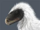 View CloudyRex's Profile