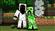 Woombs's avatar