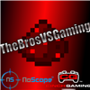 View TheBrosVSGamingYT's Profile