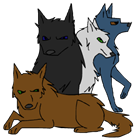 View Wolf524's Profile