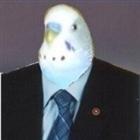 Barenulbo's avatar