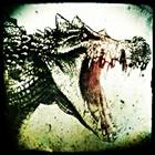 View VolatileCrocodile's Profile