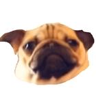 TNTBoy3258's avatar