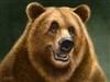 GrizzlyDipper49's avatar