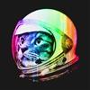 RocketCat's avatar