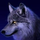 XGeoCookieX's avatar