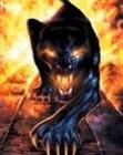 Sebor13's avatar
