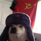 View sirsovietdoggo's Profile