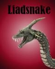 View liadsnake's Profile