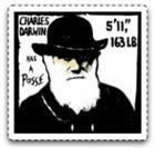 mnorris75's avatar