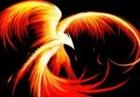 Phoenix150's avatar