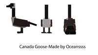 Canada Goose dossier