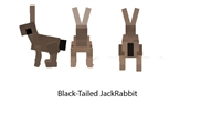 Black-Tailed Jackrabbit dossier