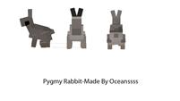 Pygmy Rabbit Dossier